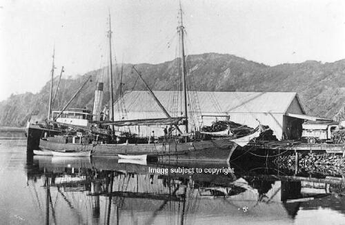 TE TEKO  1914 - 1920 Photograph: Whakatane District Museum & Gallery. Reference P5813